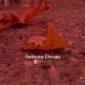 دانلود آهنگ Autumn dream از گروه آناهیتا