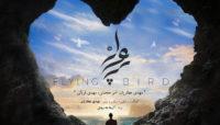 آلبوم موسیقی «پرواز پرنده» منتشر میشود