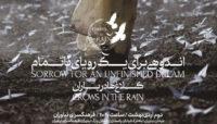 همزمان با کنسرت دوم اردیبهشت ماه / چهارمین آلبوم گروه «کلاغ ها در باران» رونمایی خواهد شد