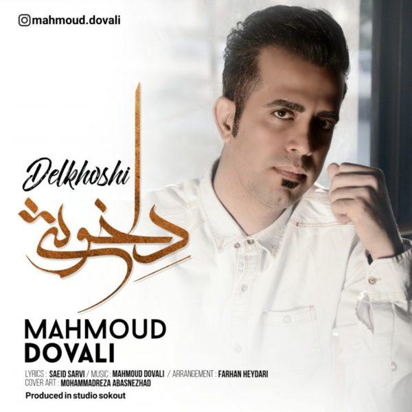 دانلود آهنگ دلخوشی از محمود دوولی