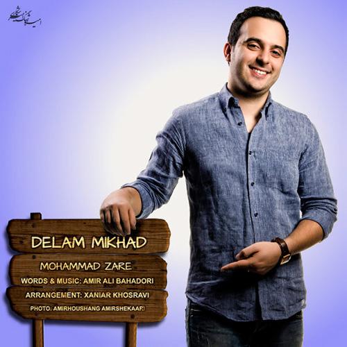 دانلود آهنگ دلم می خواد از محمد زارع